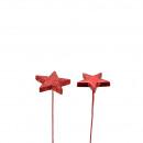 Bouquet Star